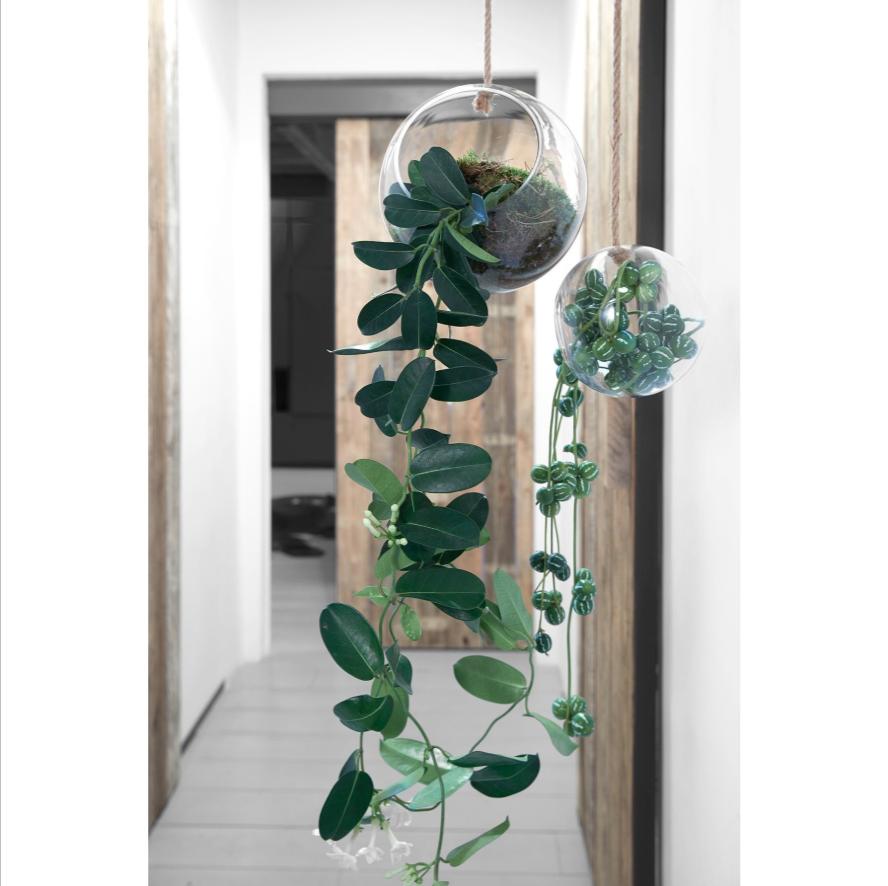 Hakbijl glass Hangende vaas met touw 18cm
